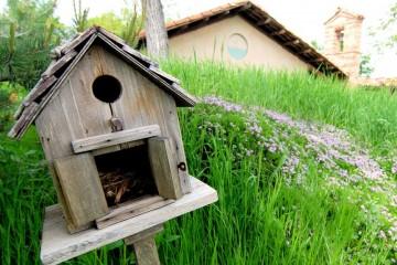 Casetta_uccellini_per_natura_green