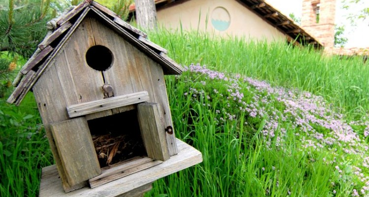 Costruire casa in modo smart la casa ecologica - Costruire la casa ...