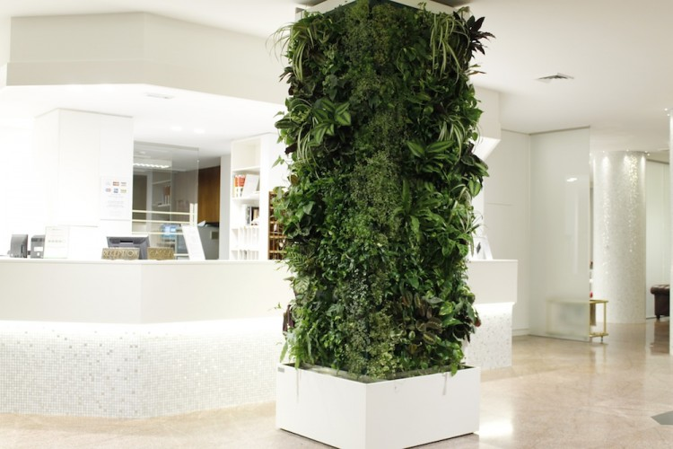 Giardini interni e pareti in verde verticale - Giardini verticali interni ...